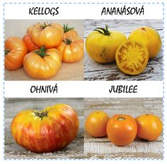 Oranžová záhrada (semená - darčekový set)
