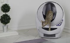 The Litter Robot is the best automatic Self-Cleaning cat-litter box. Never scoop again with our patented sifting process that cleans litter automatically! Litter Robot, Self Cleaning Litter Box, Liter Box, Clean Bed, Boy Cat, Cat Pin, Cat Treats, Plastic Laundry Basket, Pet Care