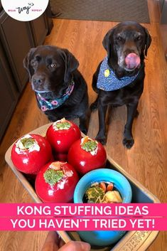 Looking for new Kong ideas that are mess free or something to give a more challenging twist to your dog's Kong. I love adding water or bone broth to frozen stuffed Kongs to make them last longer! I needed to figure out a way to freeze them standing up. It turns out a bread loaf pan perfectly holds 6 Kongs (or 4 Kongs and a West Paw Toppl!). Learn about what other hacks you can use to make long lasting stuffed frozen kongs for your dogs. These are my Labrador's favorite daily treat!