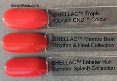 mambo_beat_shellac_color_comparison_fee_wallace