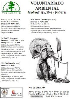 #Palencia PLANTACIÓN POPULAR ÁRBOLES AUTÓCTONOS ecoagricultor.com