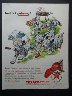 1956 Texaco Fire Chief Dalmatian Dogs Barbeque Photo Art Vintage Print Ad | eBay