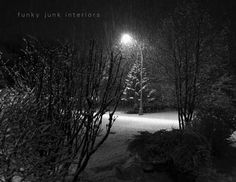 snowfall at night - more snow pictures in this post