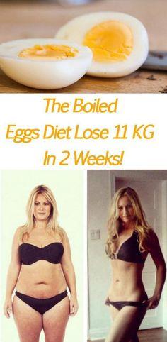 The Boiled Eggs Diet Lose 11 Kg In 2 Weeks