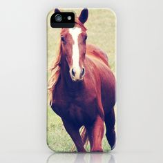 BEAUTIFUL #HORSE #iPhone Case by Allyjcat - $35.00