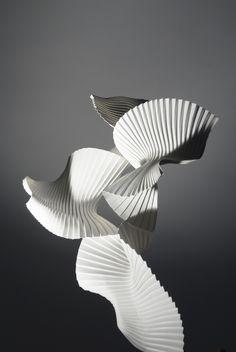 Experimental pleat (Bird in Flight) | by Richard Sweeney