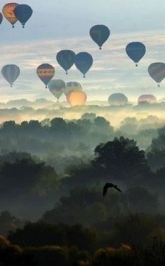 #motherearthproducts repin (you can take us anywhere!) – Balloon Race