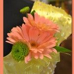 Gerbera Daisy and Kermit #Corsage Price:  $19.98 2 Mini gerbera daisies with kermit poms greens and a yellow ribbon