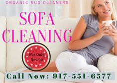 Organic Rug Cleaners offers deep cleaning of your sofa in NYC. No harmful odors or chemicals, all organic. We clean all fabrics including delicate hard to clean upholstery. Call now