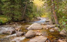 Lataa kuva vuori joen, metsä, syksy, vuoret, Banff National Park, Rocky Mountain, Kanada