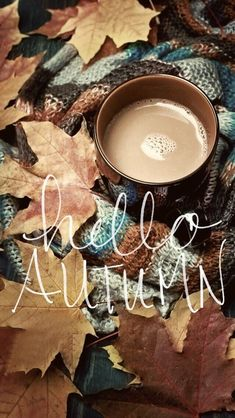- : -: - : - Old book, knitted sweater with autumn leaves and coffee mug by Fancy Things on Coffee and autumn leaves by Ruth Black - Coffee, Fall - Stocksy United Memories of leaves - autumn Wallpaper Hello autumn - - Hello Autumn. Wallpaper Free, Fall Wallpaper, Wallpaper Backgrounds, Iphone Wallpaper, Wallpaper Quotes, Mobile Wallpaper, Halloween Backgrounds, Halloween Wallpaper, Deco Jungle