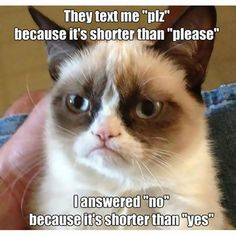 no is shorter than yes meme posted by idisagreewithmymind