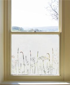 Hannah Nunn Window Film Designs To Buy Online Frosted Window Film, Window Privacy, Sandblasted Glass, Glass Etching, Etched Glass, Light Crafts, Of Wallpaper, White Ink, Lamp Design