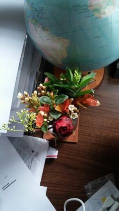Mixed flowers Flowers, Royal Icing Flowers, Flower, Florals, Bloemen, Blossoms