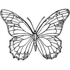 kelebek deseni - Google'da Ara