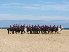 The Household Cavalry on Holkham Beach, Norfolk