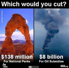 Truth be told...   Selfish, greedy oil companies who literally thrive on govt. hand-outs !