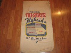 Tri-State Hybrids Sioux City, Iowa