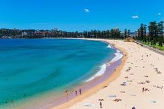 Central Coast Private Day Tour from Sydney Including Wildlife and Reptile Park 2018 Reptile Park, Manly Beach, May Bay, Secluded Beach, Beach Picnic, Sydney Harbour Bridge, Day Tours, Beach Day, Trip Advisor
