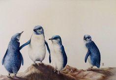 Little Blue Penguins Fox Home, Wild Honey, Grey Fox, Rock Art, Penguins, My Arts, Bird, Artist, Animals