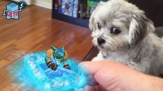 Puppy watches Skylanders Battlecast AR cards scanning