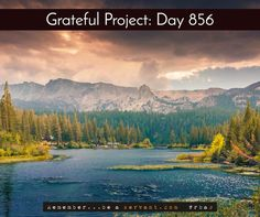 Today I'm grateful for beauty abound  When I gazed out, my heart bowed and my eyes smiled, appreciating the beauty that I saw in front of me.  Want FREE Grateful bracelets in blue, black, or white? Available now by clicking => http://GratefulProject.org/ #rbas #gratefulprojectday #tgpday856 #beauty #abound