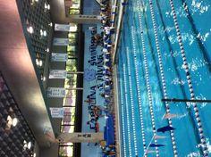 Khoury Natatorium UNC TarHeels swimming