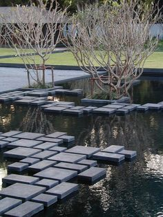 houblon:  path on water - Landscaping