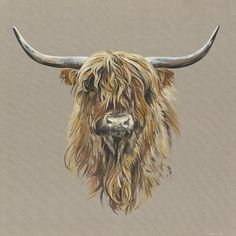 The Highland Cow - a stunning print Highland Cow Print, Highland Cow Painting, Highland Cattle, Animal Paintings, Animal Drawings, Cow Sketch, Black Faced Sheep, Cow Drawing, Fluffy Cows