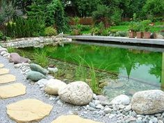 Teich der Woche 23/2013 Swimming Pool Pond, Natural Swimming Pools, Pool Water Features, Pond Waterfall, Garden Pond, Permaculture, Outdoor Activities, The Great Outdoors, Outdoor Gardens