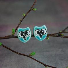 {Turquoise owl ceramic studs} so cute!