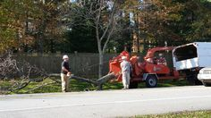 Arundel Tree Service, Stump Grinding MD LTE#1106