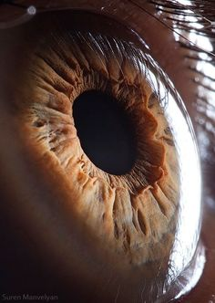 Eyes in general fascinate me. This to me is the most amazing tool in the human body the way it move and functions from the inside out is a price of art all on it's own.