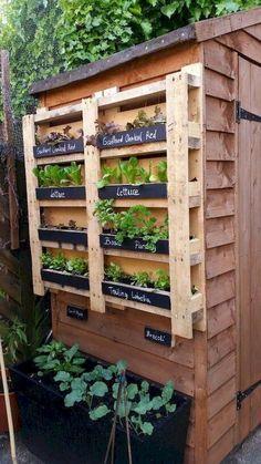 Vertical garden made with palette – Garden Types - How to Make Gardening Vertical Garden Design, Herb Garden Design, Vertical Gardens, Vegetable Garden Design, Back Gardens, Outdoor Gardens, Garden Art, Vegetable Gardening, Gardening Hacks