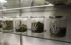 Medical Marijuana Legalization Bill For New York Uses Colorado's 'Seed To Sale' Model