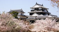 Matsuyama Castle: There are about 200 cherry trees on the castle grounds, making this a lovely cherry blossom spot typically around late March to early April each year.