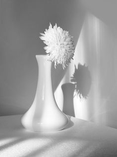 High Key Photography, White Photography, Aesthetic Colors, White Aesthetic, Pinterest Color, Hyper Realistic Paintings, White Sky, Pure White, Black And White Wallpaper