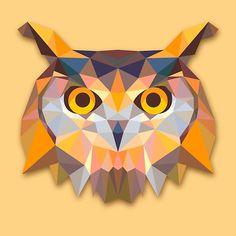 Owl Animals Gift