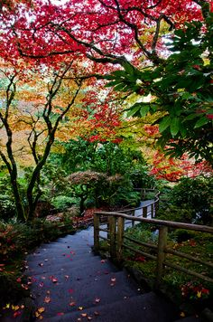 Idyllic walkways in Butchart Gardens in British Columbia, Canada