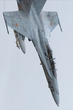 Wings in the sky Us Military Aircraft, Military Jets, Air Fighter, Fighter Jets, F18 Hornet, Spanish Air Force, Photo Avion, Fighter Aircraft, Airplane Fighter