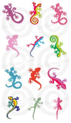 Colourful Geckos