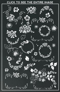 Hand drawn flowers, leaves, laurels and wreaths in black and in white. Includes a total of 68 PNG files and 2 EPS files of all the images shown in the 5th image. Click it to see the entire
