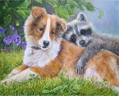 Shirley Deaville - Please Don't Go Critters 3, Dog Art, Corgi, Sweet, Artist, Prints, Beautiful, Color, Drawing Drawing