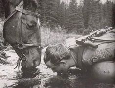 An interesting photo set that shows moments of people and animals you rarely see today. War Dogs, Ww2 Pictures, Anzac Day, War Photography, Vintage Horse, Beautiful Horses, Historical Photos, World War Ii, Old Photos