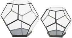 Three Hands Octaganal Glass Terrarium, Set of 2 Three Hands http://www.amazon.com/dp/B00OA0ZCA4/ref=cm_sw_r_pi_dp_Bz1Cub0Z5NA6R