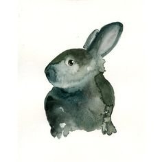 BUNNY by DIMDI Original watercolor painting 8X10inch ($25) ❤ liked on Polyvore