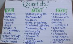Scientists graphic organizer and more ideas for back to school science! From More Than a Worksheet