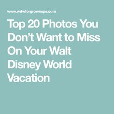 Top 20 Photos You Don't Want to Miss On Your Walt Disney World Vacation