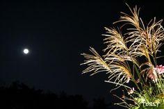 須磨離宮:月見の宴