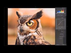 simple and powerful Lightroom editing tutorials
